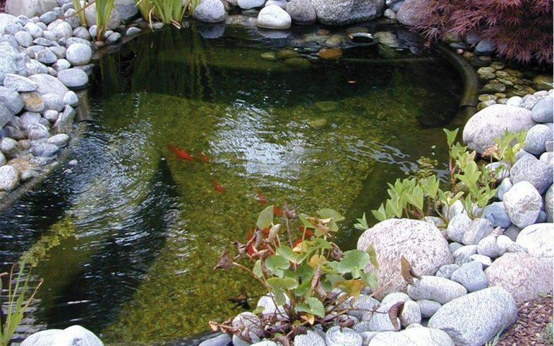 Les avantages du bassin préformé par rapport à la bache