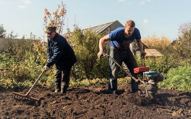 Quels travaux agricoles faire avec une motobineuse ?